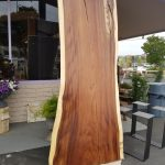 Parota Wood slab
